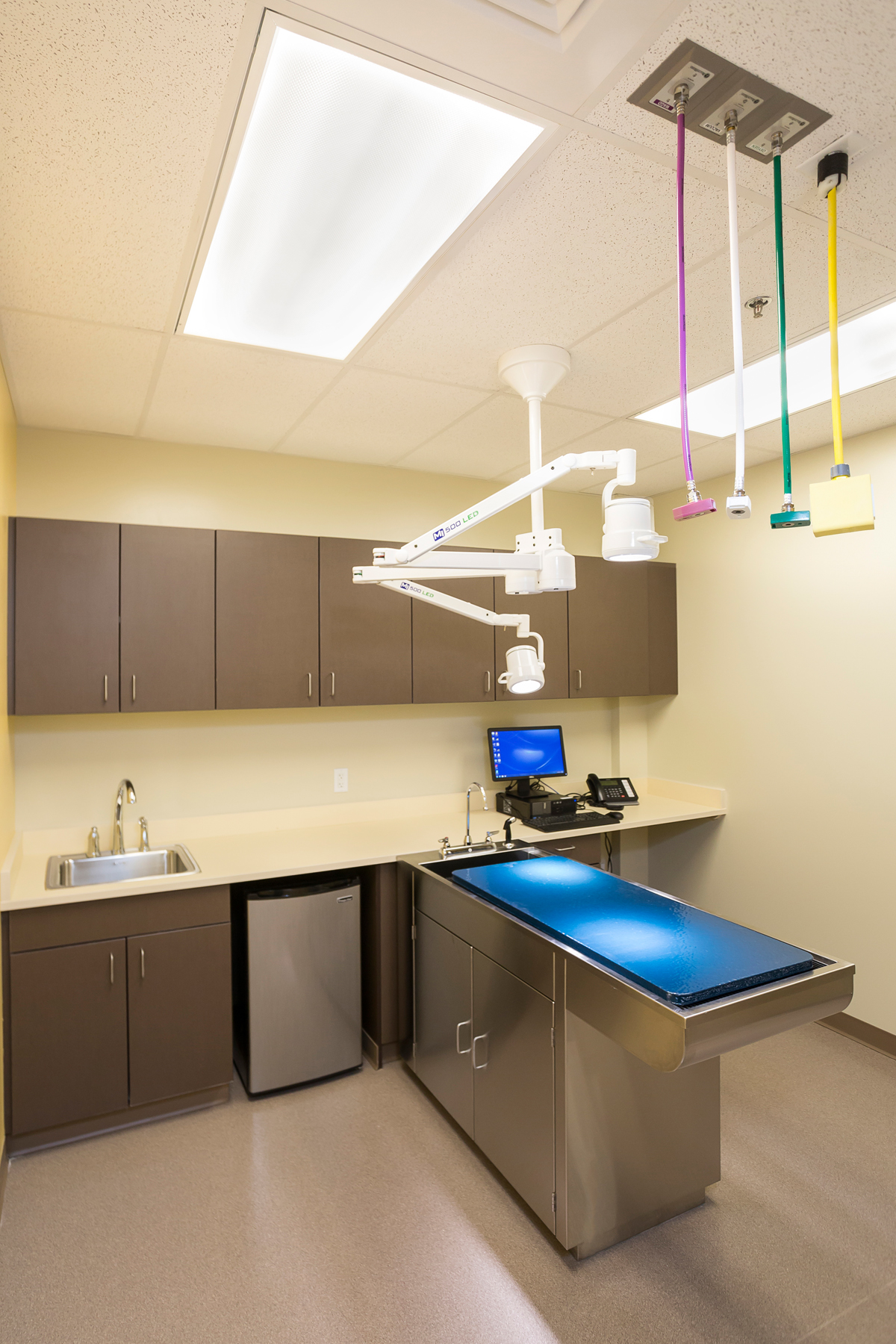 Veterinary Hospital Construction- Jordy Construction Colorado 4