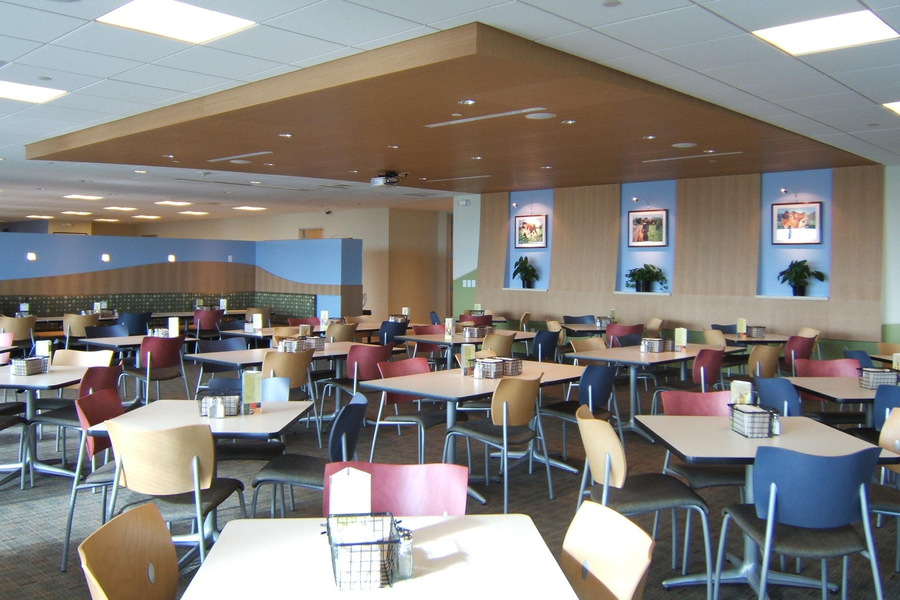Colorado Cafeteria Buildout, Colorado Construction- Jordy Construction 1